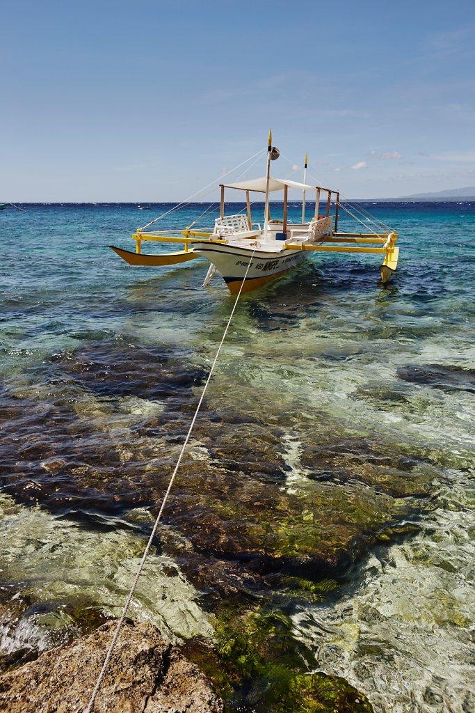 APO-Island-4.jpg
